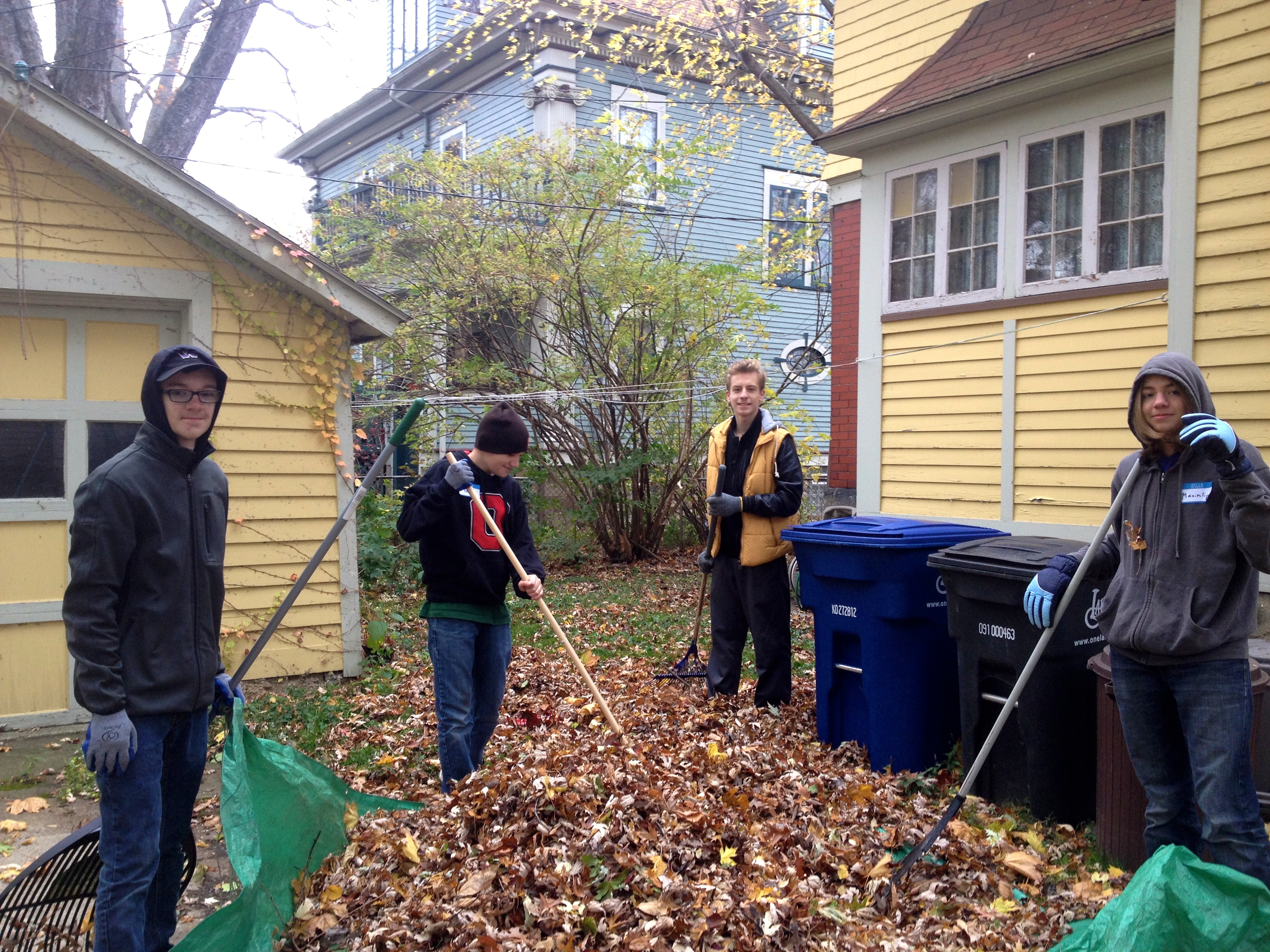 H2O Leaf raking