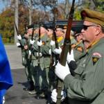 Photo of Veterans at Veteran's Day Ceremony in 2015